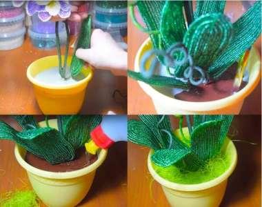 Садим орхидею в горшок